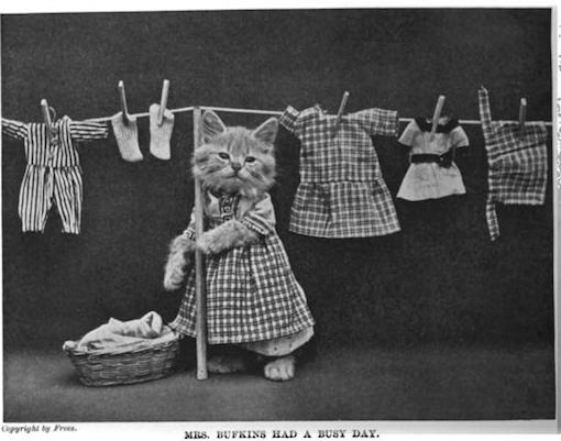 cybergata:  More Vintage LoLCats on Urlesque