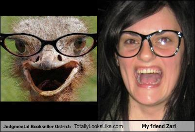 Judgmental Bookseller Ostrich Totally Looks Like My friend Zari (via Judgmental Bookseller Ostrich Totally Looks Like My friend Zari - Cheezburger.com) Zari needs to borrow my glasses.
