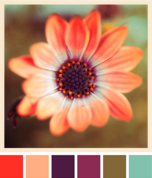 gushing over another color palette…seriously, love it!