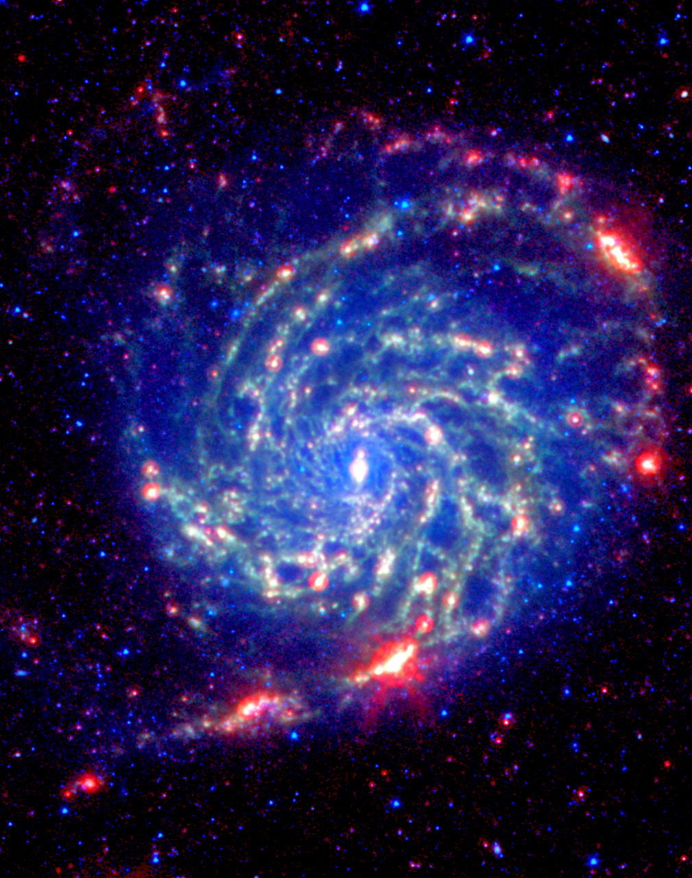 No Organics Zone Circles Pinwheel Galaxy  Research from the Spitzer Space Telescope  has revealed that the outer red zone of the Pinwheel galaxy lacks organic molecules present in the rest of the galaxy. The red and blue spots outside of the spiral galaxy are either foreground stars or more distant galaxies.  The organics, called polycyclic aromatic hydrocarbons, are carbon-containing molecules that help in the formation of stars. These hydrocarbons provide the raw material for carbon on planets, and can be formed into amino acids and nucleotides.  This research suggests that life may be less common in the metal-poor outer regions of galaxies.