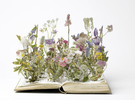Wildflowers by Su Blackwell (A.K.A Queen of Book Arts!)