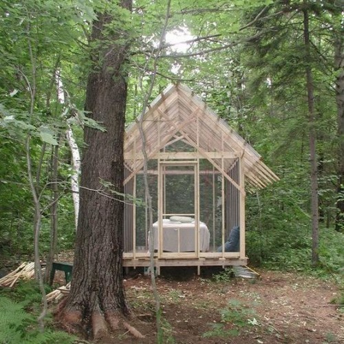 cabinporn:  The Fern House