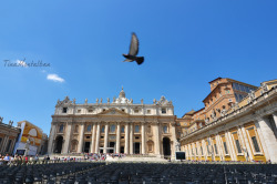 Flight (St. Peter's Basilica, Vatican City) submitted by: http://tinamaldita.tumblr.com, thanks!