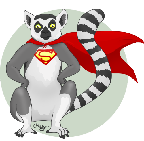 cheeseborger:  This is my go at a lemur superpet for my friend and two-time donor, Kiran. Again: To get a digital drawing made just for you, donate 10 dollars or more here and contact me about it.