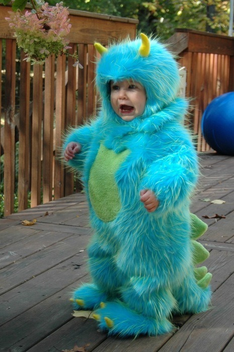 cute costume - Sully ( Monsters Inc. )