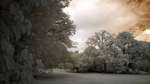 Moorestown, New Jersey in infrared