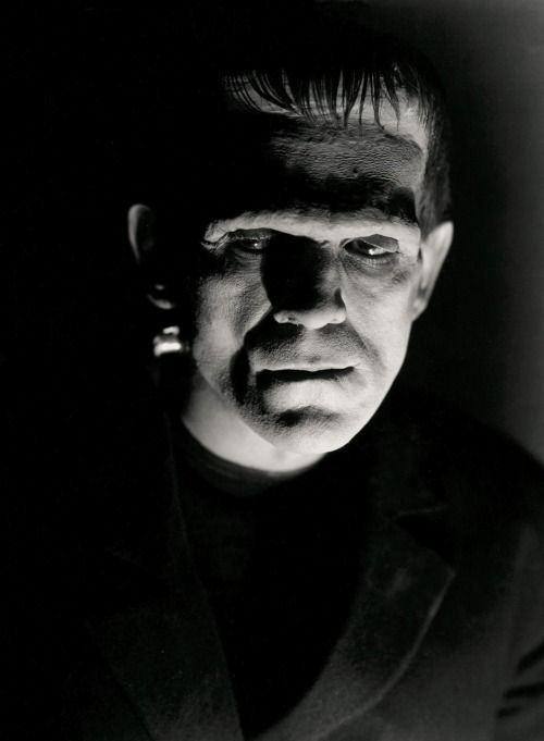 """I was having lunch and [Frankenstein director] James Whale sent either the first assistant or maybe it was his secretary over to me, and asked me to join him for a cup of coffee after lunch, which I did. He asked me if I would make a test for him tomorrow. 'What for?' I asked. 'For a damned awful monster!' he said. Of course, I was delighted, because it meant another job, if I was able to land it. Actually that's all it meant to me. At the same time I felt rather hurt, because at the time I had on very good straight makeup and my best suit - and he wanted to test me for a monster!""  -Boris Karloff, on being offered the role of Frankenstein's monster (via)"