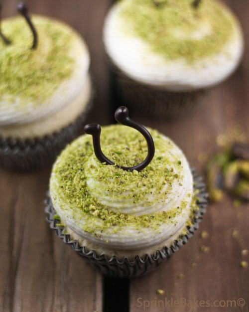 Lucky vanilla cupcakes with Honey Cream Cheese Frosting.  Naturally green for St. Paddy's day.  Recipe, photos, and more at Sprinkle Bakes