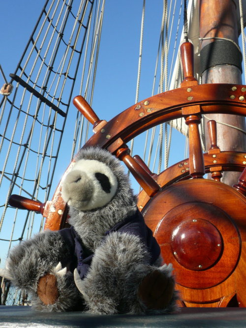 creative-license:  A sloth on the HMS Surprise. this makes me inordinately happy.  :D I love our sloth! Took this picture in 2008. He had a red shirt in 2009 so he could match the rest of the Sail Crew.