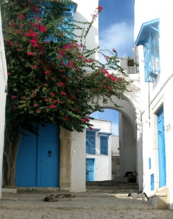 Sidi Bou Said, Tunisia submitted: underjules@yahoo.com
