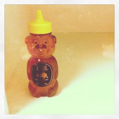 Lonely Honey Bear (Taken with instagram)