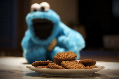 toscreamitlouder:  The Cookie Monster