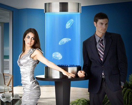 bestrooftalkever:  laughingsquid:  The Next Step in Aquatic Pets: Jellyfish  This is the douchiest photo ever conceived by man.
