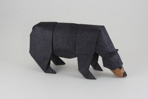 blua:  Black Bear (by Quentin Origami)