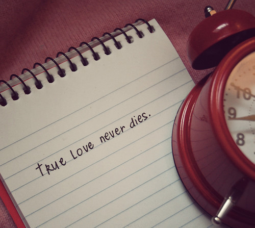 true love never dies like me and …