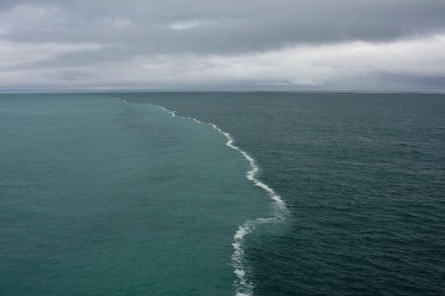 These two bodies of water were merging in the middle of the gulf and there was a foam developing only at their junction.
