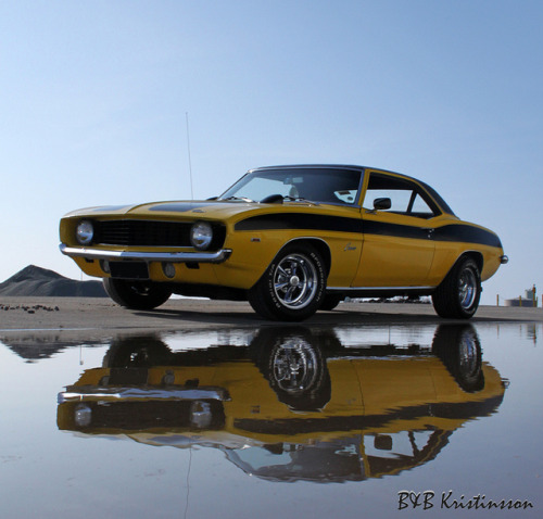 Long lived bee Starring: '69 Chevrolet Camaro (by Kristinsson)