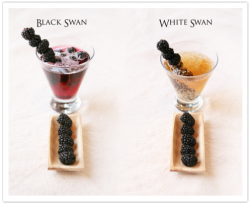 Black Swan and White Swan cocktails by Jeanine Thurston
