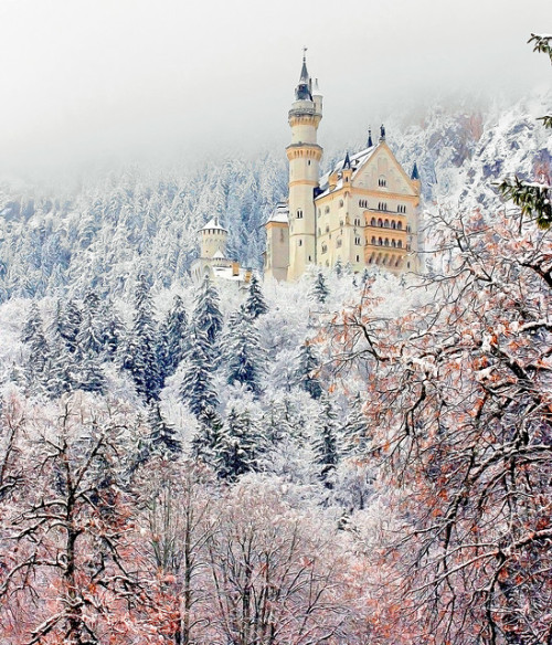 jackyjohnson:  Neuschwanstein castle in winter. Bavaria, Germany. Neuschwanstein Castle by Luiz Pires  Seeing pictures of Neuschwanstein always makes me ashamed that I've never been.