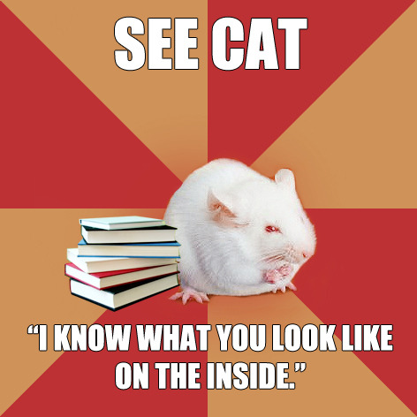 "fyeahsciencemajormouse:  Found on the Science Major Mouse memegenerator page ""Oh, I love animals! I've dissected at least one member of each phylum!""  THIS SO FUCKING MUCH.  God, this reminds me of the days I used to sneak in the university dissection labs to stare at dead bodies (legit dead woman on the table, yo!) when I was in sixth form. LMFAO. I was strange back then… not much has changed."