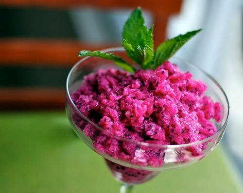 tropical dragon fruit granita.