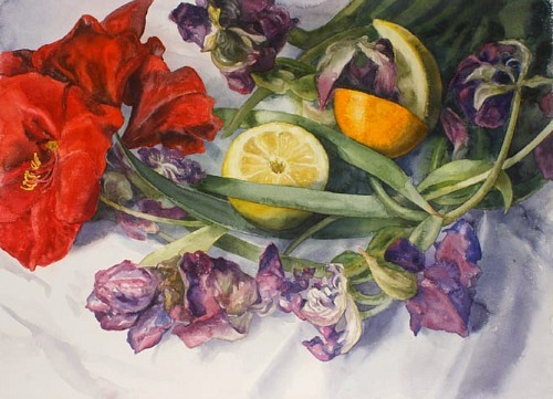 Eileen Goodman Amaryllis, Citrus and Drying Tulips 2010