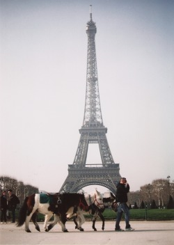 Eiffel Tower With some Donkeys for Good Measure!