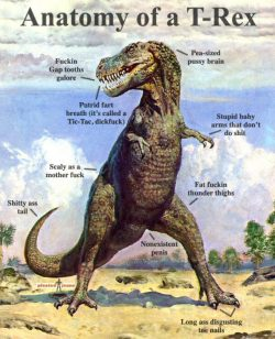 pleatedjeans:  anatomy of a T-Rex