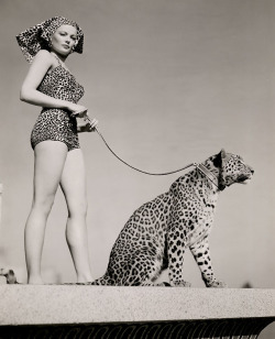 Gene Tierney and leashed leopard, photo by Frank Powolny