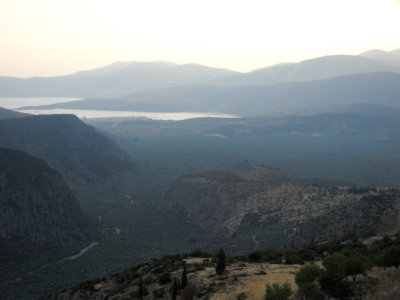 another one of my photos of the sea of olives in delphi