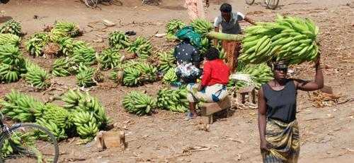 Bananas for Sale - Tanzania
