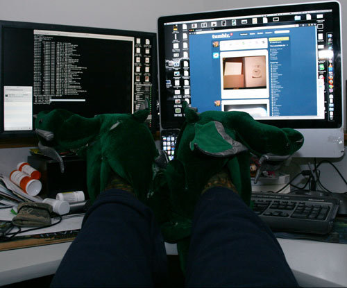 dragon slippers, coffee, tumblr, and fuck it all to work.