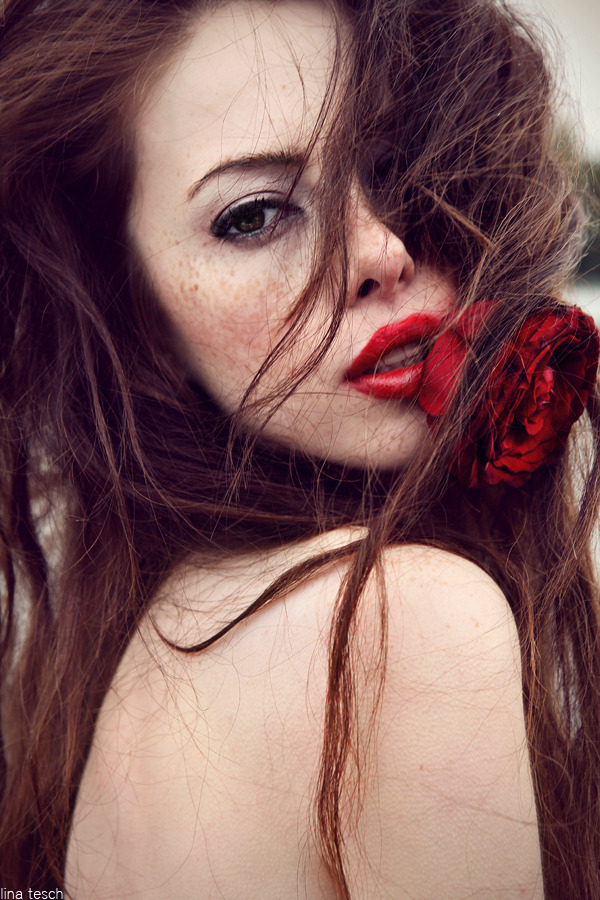 "mockhare:  ""Blood Red Rose"" by Lina Tesch"