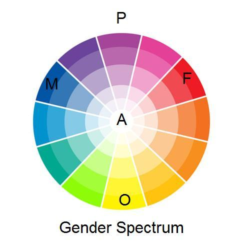 "mynameislyddy:  My best attempts at a gender spectrum. It's a colour wheel. Because it's already established, I have put F, standing for Feminine gender, as red, and M, standing for Masculine gender, as blue. Going nicely with the pansexual flag colours, I have put O for Other gender (though part of me feels I should have put Third gender) as yellow. Each gender/colour fades down to centre, where I have put A for Agender. I don't really know/haven't come across any people who are pangender, or completely grasped the concept, so I just put it on the opposite place to agender; the outside of the wheel. With this wheel, you can say ""I am somewhere between masculine and other, but it's not a really gendered gender"" and it makes sense, because you point at light green (which looks like turquoise, but this was the best wheel I found). You can say ""If I'm anything, I'm feminine"" and it makes sense, because you point at light pink. And bigender? Sometimes *here* and sometimes *here*. Genderqueer is anything that isn't red or blue, I think. XD Perhaps someone could take this diagram and run with it, because everything I've seen so far tries to fit sex AND gender on the same chart, or is too 2D. This is the best I can do, and I think it could do with some improving. A point of interest; I think I'm some sort of orange on this."