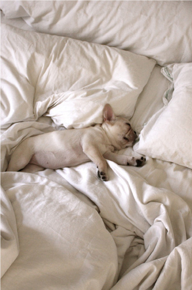 White sheets always look like would just be comfy as a cloud.