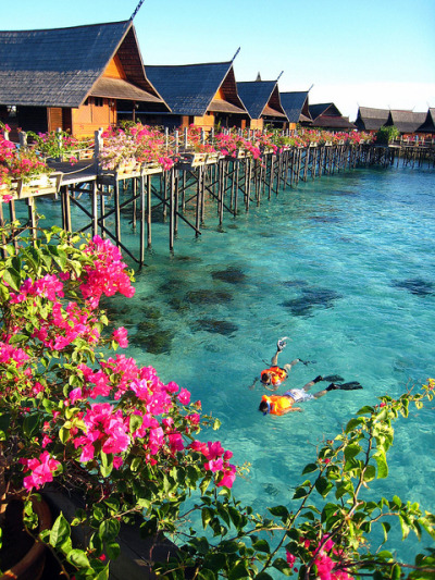 sunsurfer:  Tropical Resort, Tahiti, French Polynesia photo from nexus
