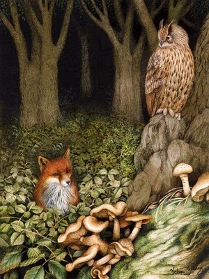 A Polar Bear's Tale: 'Brown is the Owl' print by Valerie Greeley