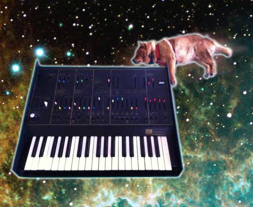 "SPACE SYNTHIMALS!!! King Kino as he sleep floats through ""nebulous"" waters. In space no one can hear you bark, or solo on yr Oddy!!!"