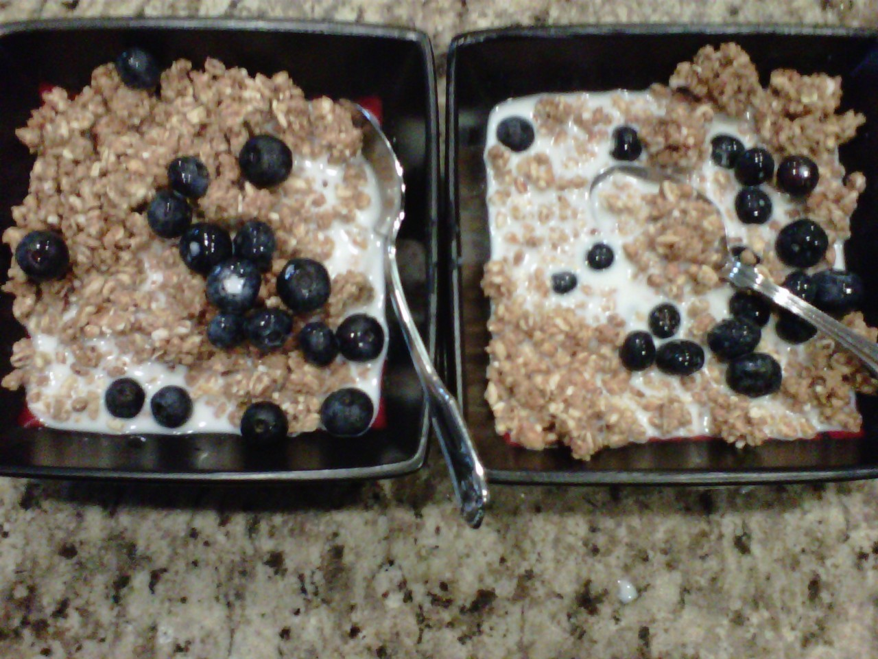 My breakfast (with a friend) - Kashi with organic fresh blueberries- LL