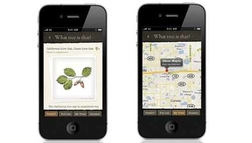 Identify trees with your iPhoneA new iPhone app from the Arbor Day Foundation lets you identify trees on the go — and even geo-tag them to start a national tree inventory system.