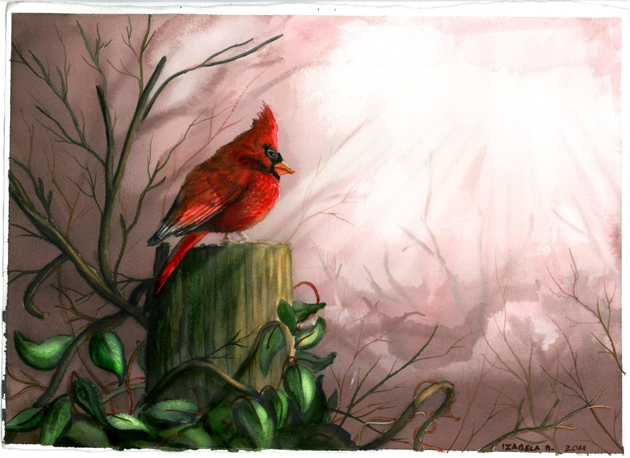 CardinalArt class project[Source]