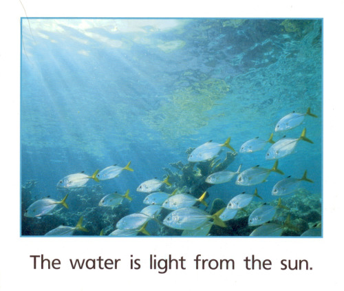 Water is light from the sun