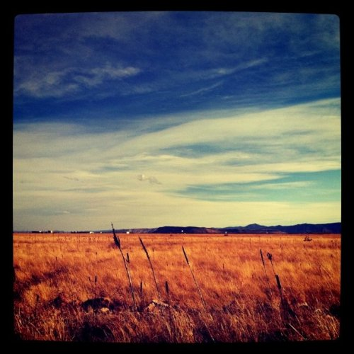steph-down-underer:  Colorado (Taken with instagram)  Tomorrow: Writer Kristen Iverson spent her childhood in the 1960s in Colorado near the Rocky Flats nuclear weapons factory, playing in fields and swimming in streams that it now appears were contaminated with plutonium. Tomorrow: we talk with Iverson about the decades-long environmental scandal involving nuclear contamination in and around Rocky Flats.