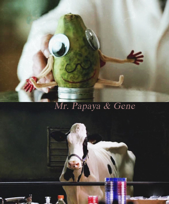 wingered:    weirdconnections asked: Gene or and Mr. Papaya  You can't make me choose! I won't do it. Gene and Mr. Papaya are a fucking OTP! I won't choose one over the other. Love them both.