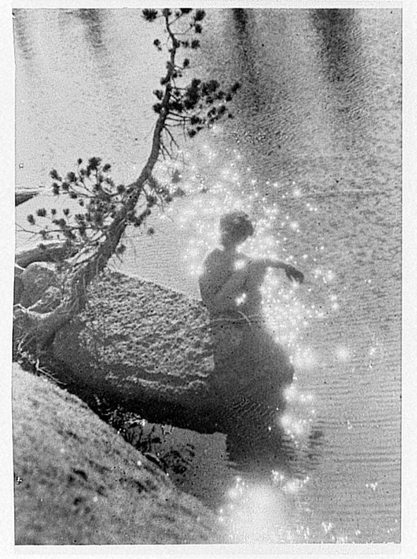 Brigman, Anne   American (b. Hawaii, 1869-1950)  DESCRIPTIVE TITLE: Stardust  ca. 1915 / ca. 1940, reworked from earlier negative  gelatin silver film interpositive  11.9 x 8.5 cm.  Gift of Willard M. Nott  http://www.geh.org/ar/strip81/htmlsrc/m197600550025_ful.html#topofimage