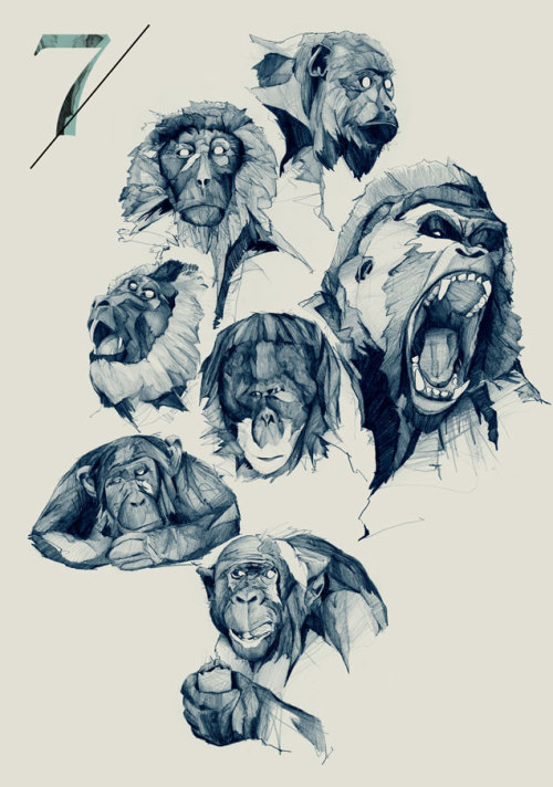 "Philipp Zurmoehle - ""Seven Monkeys"""
