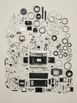 anatomy of a camera laughingsquid:  Disassembled Objects by Todd McLellan