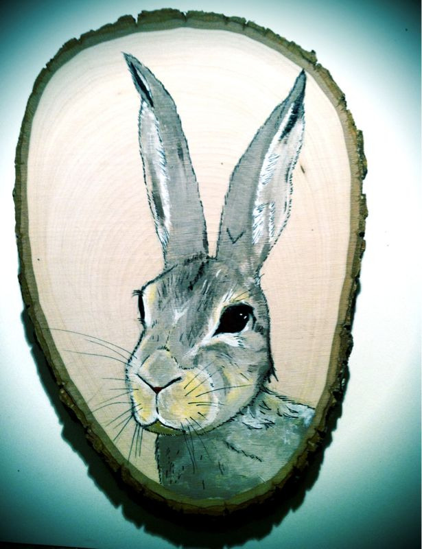gnomeart:  Cotten tail Rabbit on walnut.