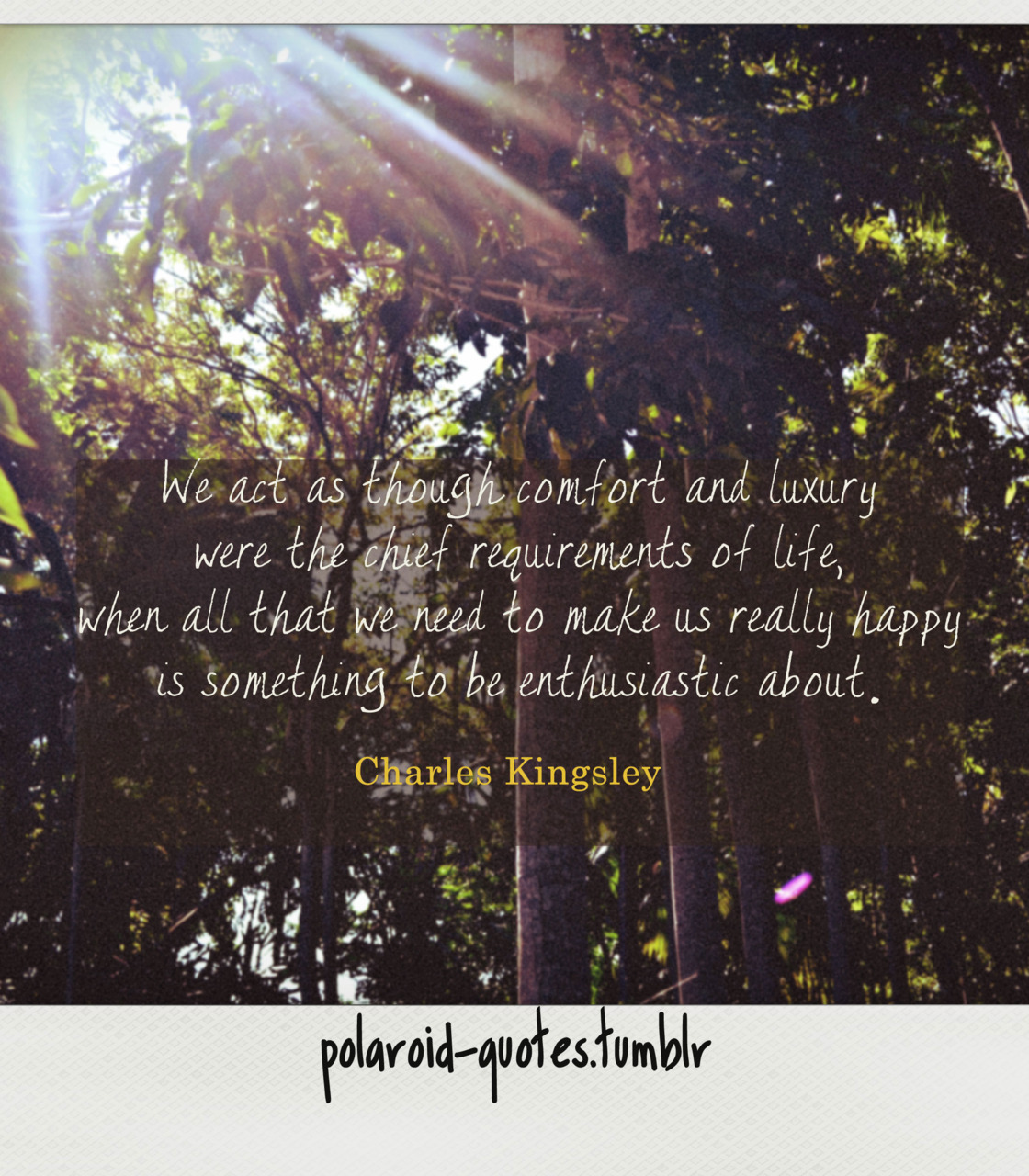 polaroid-quotes:  012