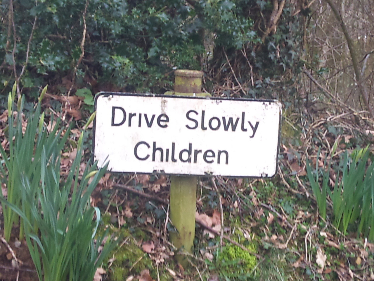 But adults can drive as fast as they like…